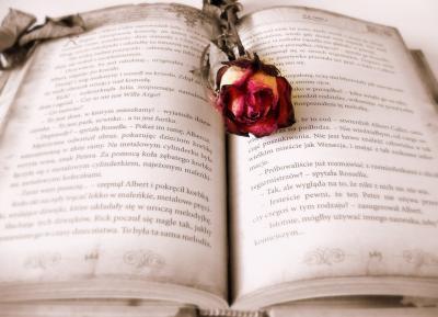 Book 419589 960 720